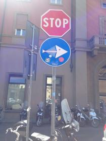 Stop fishing in Florence city center